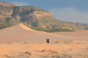 Pink Sand Dunes