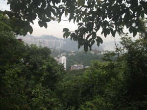 Hong Kong trails!